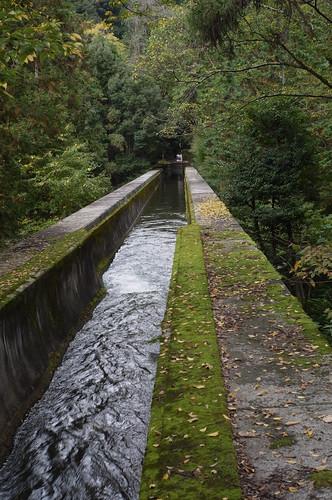 京都をめぐる冒険 水路閣1