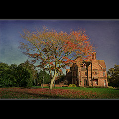 Foxhill House (sisyphus007) Tags: uk autumn england texture leaves architecture reading britain gothic berkshire 1020 alfredwaterhouse mygearandme foxhillhpouse universityuniversitytowncitynikond3100sigma hugohurst