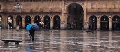 Nothin' lasts forever (mcrucera) Tags: plaza november rain umbrella lluvia cloudy noviembre salamanca paraguas despedida abrazo mojado