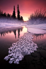 Winters Tones (Wolfhorn) Tags: winter snow cold ice nature alaska shortdays wildernesslandscape