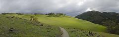Green light (debunix) Tags: panorama green sunolregionalwilderness cmwdgreen