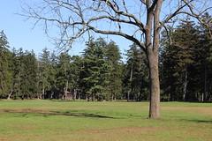 Ocean County Park