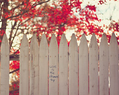 {Words of Wisdom} Fence Friday (Jaime973) Tags: love canon fence 50mm words raw wisdom friday handwritten hff niftyfifty itsureis happyfridaytoyouall fencefriday loveistheultimatetrip