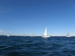 PA097473 (giotto1959) Tags: sergio sail regata giotto vele giotto1959 olympussp560uz regatare september2011 barcolana2011 settembre2011 autunno2011 supsail
