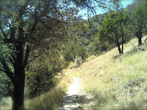 Saturday Hike