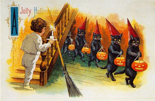 Jolly Halloween Black Cat Line-up