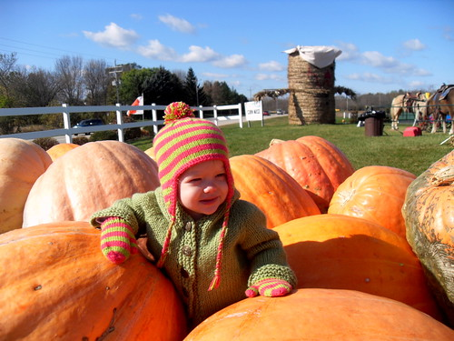 squished by pumpkins!