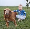 IMG_8956 (drjeeeol) Tags: dog pet goldenretriever backyard tiger charlie fav triplets toddlers 2011 36monthsold