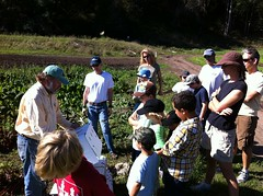 Star Route Farms Gleaning