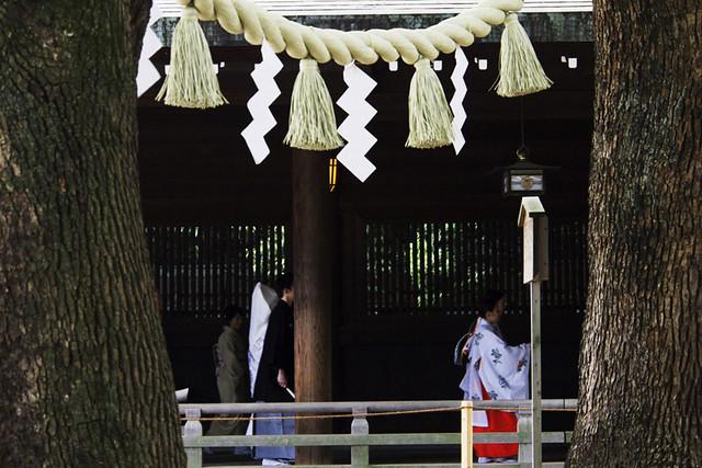 110514_160328_東京_明治神宮