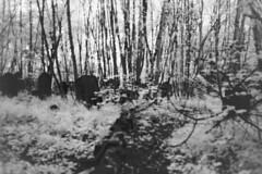 Spooky Graveyard (Saturated Imagery) Tags: graveyard dark ir spooky infrared rolleiir400 vivitar28mmf25 prakticatl5b