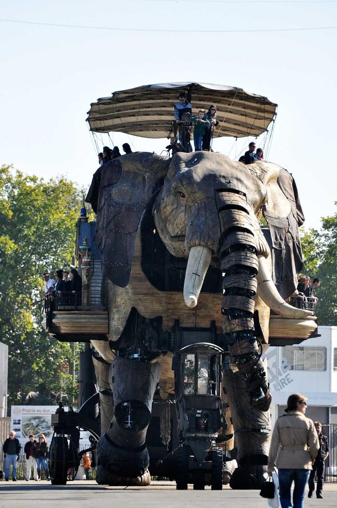 elephant-a-nantes