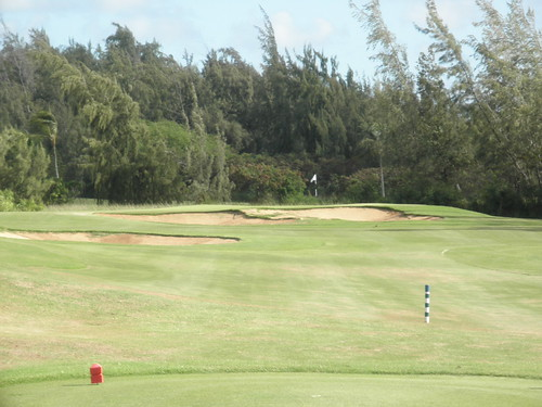 Turtle Bay Colf Course 099
