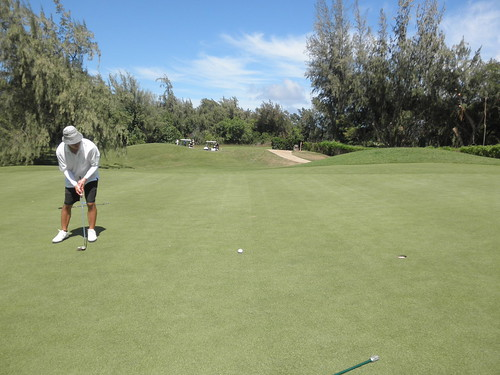Turtle Bay Colf Course 250