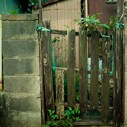 Gate and Weeds, Mimomi, Chiba, Japan