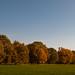 herbst-29.10.2011-5