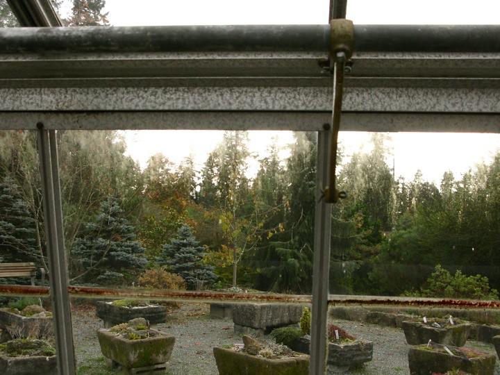 ubc botanical garden 012
