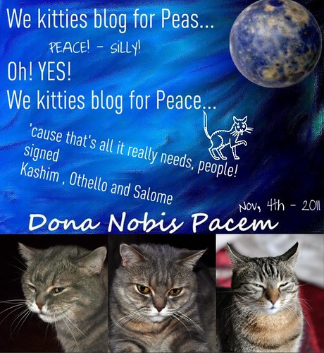 Dona Nobis Pacem 2011 - kitty style