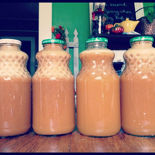 6323059420 99b912e0ce Homemade Apple Juice