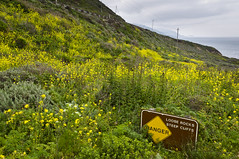 Loose Rocks, Garrapata State Park, Big Sur, CA 2010 (Lone Cypress) Tags: california sign bigsur pch highway1 garrapatastatepark pointsur