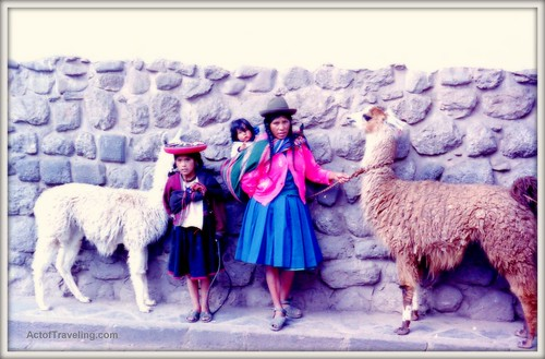 Family with vicunas in Cuzco
