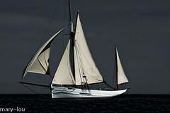 _DSC0409 GHOST SHIP...... (mary~lou) Tags: sea sunshine fletcher boat nikon sailing mary sail gamewinner mary~lou gamex2winner gamex3winner pregamesweepwinner pregameduelwinner