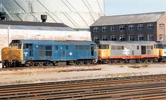31288 & 31205 (R~P~M) Tags: uk greatbritain england train diesel unitedkingdom shed railway gloucestershire gloucester depot locomotive 31 britishrail glos railfreight