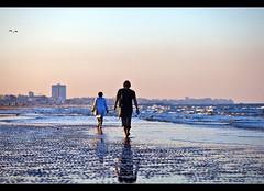 follow me (_esse_) Tags: tramonto mare dof steps luce gabbiano vita onde orme followme passi cesenatico secca battigia parecchioinbarbaalleregolecompositivemaoscattavosubitooliperdevo