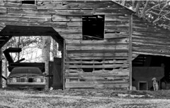 Two dawgs (hutchphotography2020) Tags: old bw classic barn rural 1974 nc nikon gm grandprix weathered pontiac blackdiamond monochome farmdog flickraward