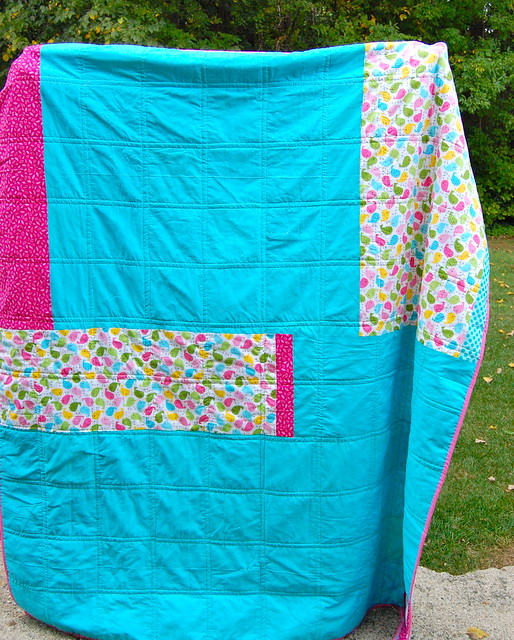 Chasing Charlotte Quilt Back