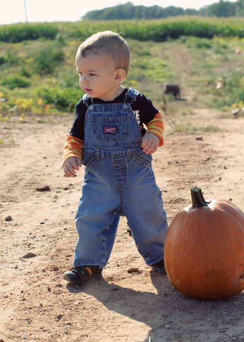 pumpkinpatch2011_3