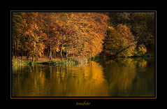 (tozofoto) Tags: autumn trees light shadow panorama lake reflection water colors canon landscape lago hungary natur acqua herfstkleuren riflesso zala tozofoto saariysqualitypictures fleursetpaysages lelitedespaysages