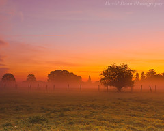 New Beginnings       Explored (jactoll) Tags: uk morning autumn trees mist rural sunrise landscape dawn countryside early nikon october meadow worcestershire nikkor vr worcs pershore 2011 valeofevesham 1685mm d7000 jactoll