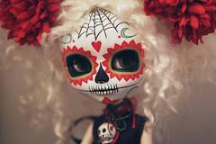 Marisol (Kittytoes) Tags: dayofthedead skull doll sugar diadelosmuertos pullip calavera melancholykitties