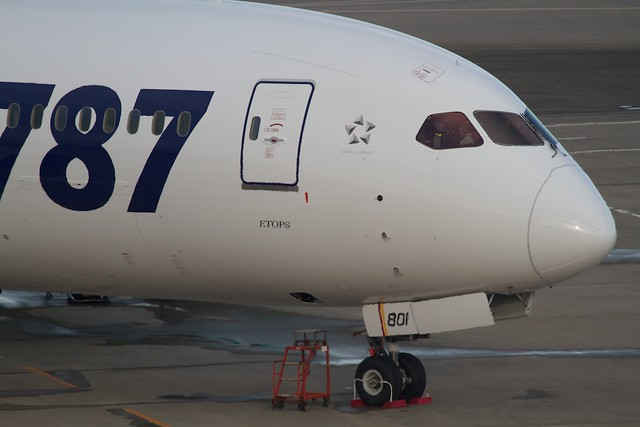 ANA Boeing787-8 1st livery