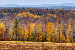 Autumn Hills & Fields (Greg from Maine) Tags: autumn trees field rural landscape farming maine newengland farmland hills soil layers fallseason piscataquis sangerville piscataquiscounty flickraward sangervillemaine