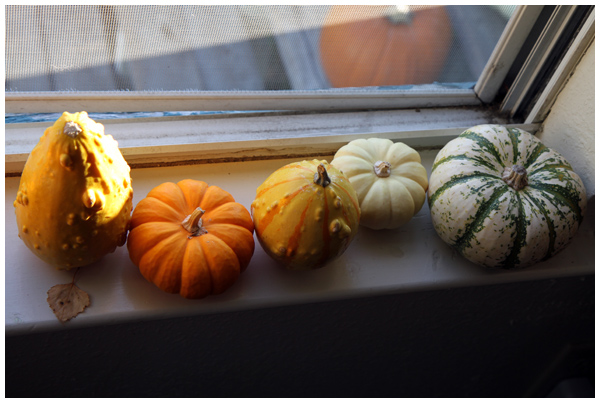 Accumulating gourds