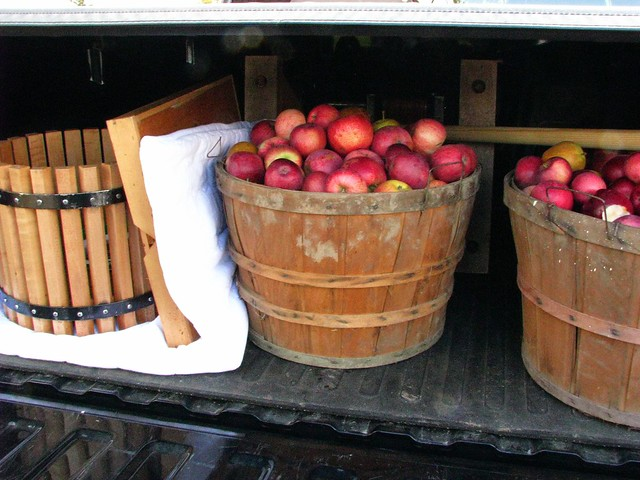 apples in the truck
