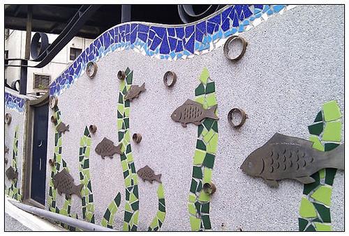 20111029魚
