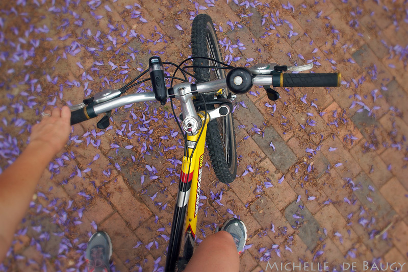 bikeride1_edited-1