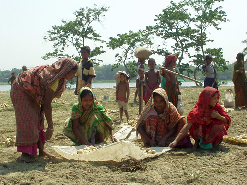 Women from a fishing village, Bangaldesh. Photo by Hamil Beel, 2006