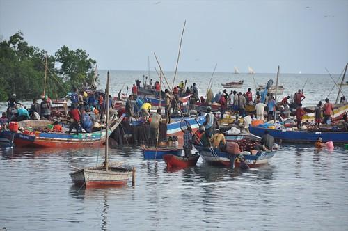 Fishing boats in Kilwa Kivinjie