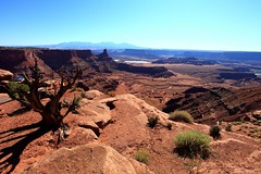 DHPOINT03 (globetiger) Tags: travel usa america landscape nationalpark view canyon deadhorsepoint canyonlands    selfdrive   cenery