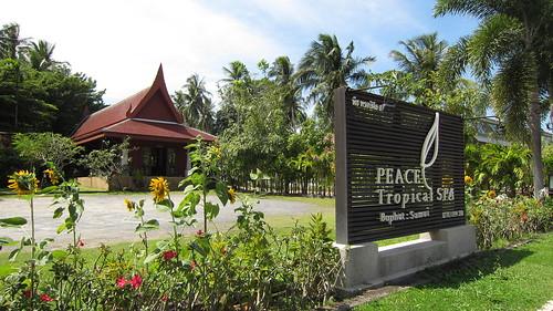 Koh Samui Peace Tropical Spa サムイ島ピーストロピカルスパ (29)