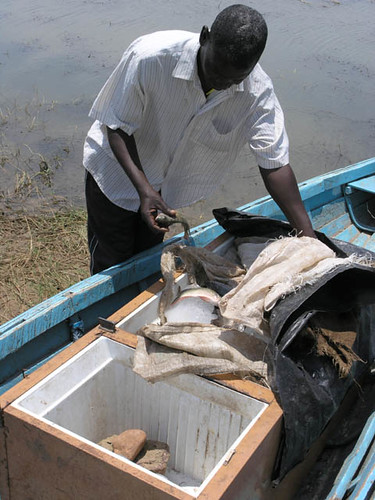 Small-scale fisheries, Zambia. Photo by Jamie Oliver, 2007
