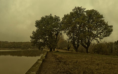 dia lluvioso, la granjilla, el escorial (alcachofa1960) Tags: madrid forest landscape arbol lumix lluvia pond camino country paisaje panasonic bosque cielo nubes reflejo campo estanque tarde elescorial lx5 lagranjilla rafaelcatering
