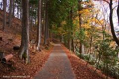 autumn,chichibu,,saitamaken,deloprojet,japan (delo photo) Tags: autumn japan jp saitamaken chichibu japan  saitamaken deloprojet