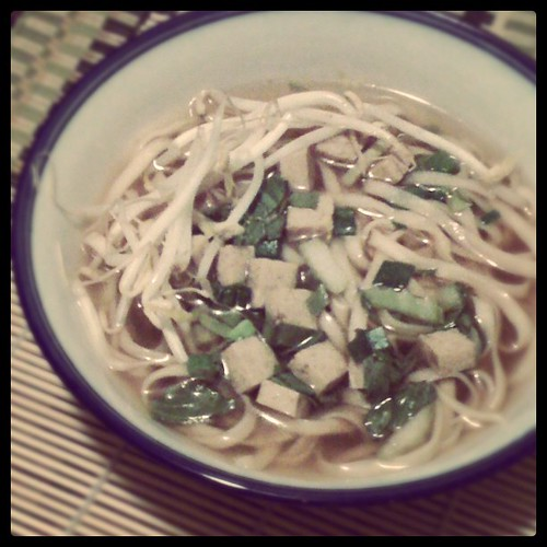 Green Tea, Tofu, and Noodle Soup
