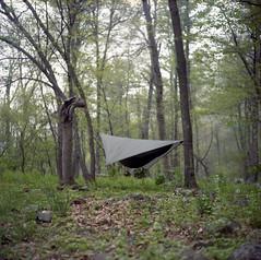 (Bryan Vana) Tags: usa tlr film forest mediumformat virginia kodak hiking backpacking va hammock portra yashica appalachiantrail twinlensreflex 80mm shenandoahnationalpark 160nc yashinon mauck yashica24 ƒ35 bryanvana
