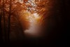 The gate to nowhere (enrix64) Tags: autumn fog beechtree forest autunno nebbia faggi darkened enrix64 sailsevenseas bestcapturesaoi elitegalleryaoi platinumheartaward pollino tripleniceshot doubleniceshot enrix flickraward flickrawardgallery flickraward5 misty ruby20 ruby25 abigfave